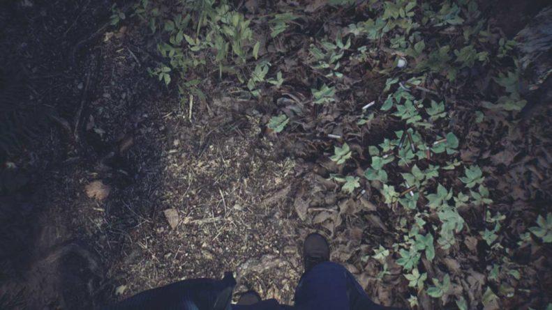 Textura do chão